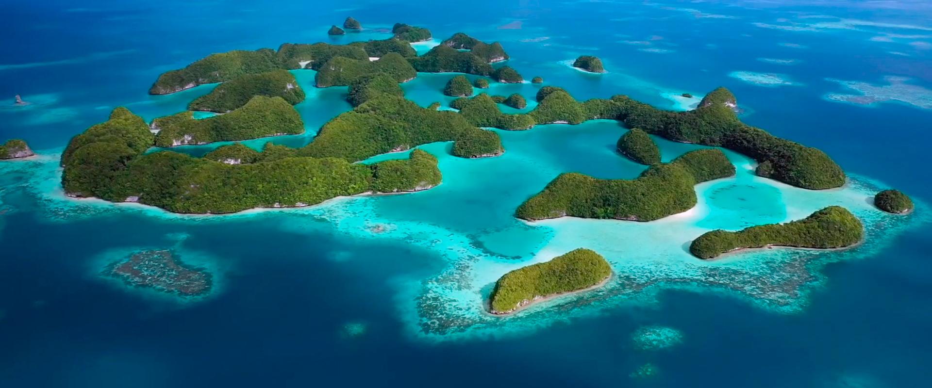 Palau Ocean