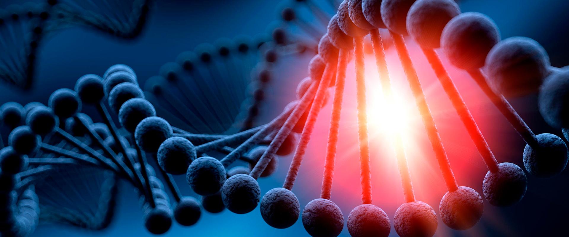 ADN ancestral