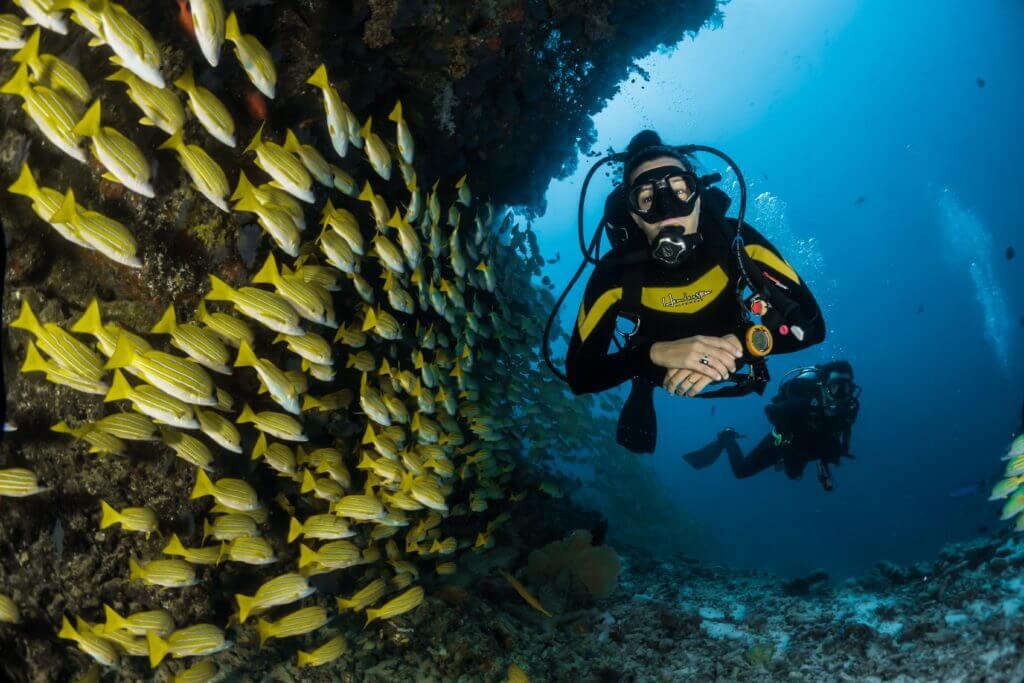 Bucear en las Maldivas