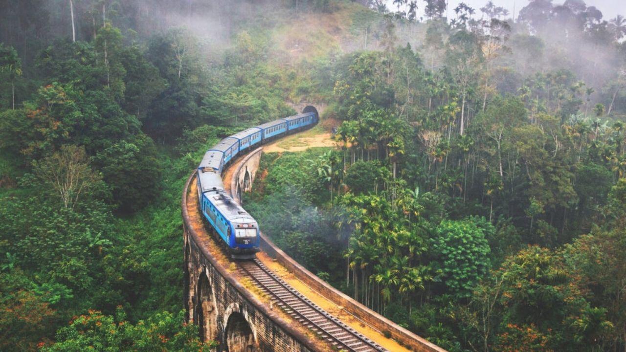 Sri Lanka y sus maravillas Merlin